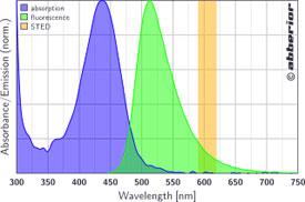 STAR 440SX|吸収&蛍光スペクトル