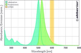 STAR 488|吸収&蛍光スペクトル