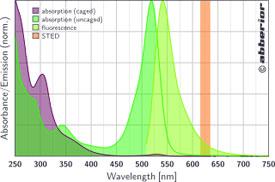 CAGE 532|吸収&蛍光スペクトル