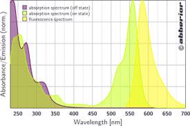 FLIP 565|吸収&蛍光スペクトル