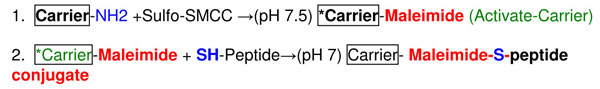 キャリアータンパク質結合原理