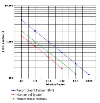 リコンビナントタンパク質とNativeタンパク質の比較