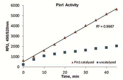 図1 本キットを使用した Pin1 活性の測定