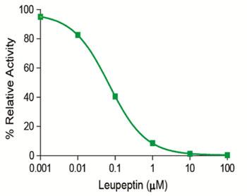 図1 本キットを用いて検出した、ロイペプチンによるマトリプターゼ活性の阻害
