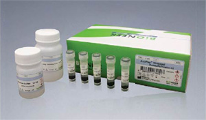 MagListo His-tagged Protein Purification Kit