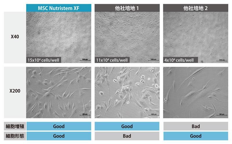 脂肪由来 MSC を用いた他社培地との性能比較(P2、培養 3 日目)