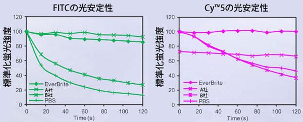 HeLa細胞の免疫蛍光染色について、本品と他のマウント試薬で光安定性を比較