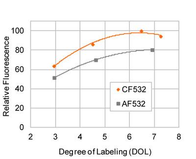 相対的な蛍光の比較