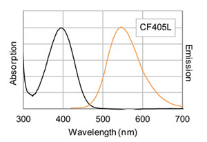 CF®405L 標識ヤギ抗マウス IgG(in PBS)の励起/蛍光スペクトル