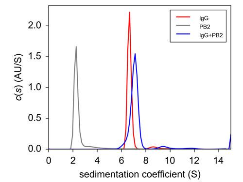 PB2, IgG, PB2+IgG の超遠心分析結果