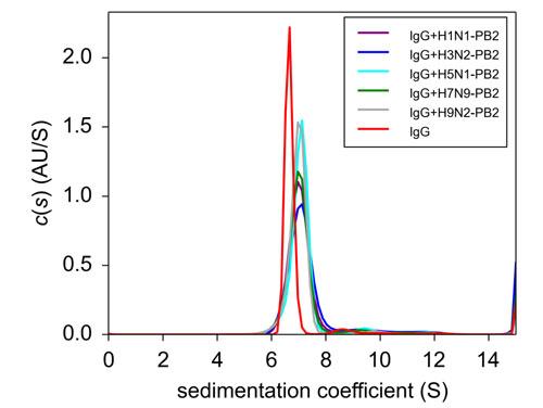 図 3. IgG, PB2(H1N1, H3N2, H5N1,H7N9, H9N2)+IgG の超遠心分析結果