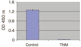 テトラニトロメタンによるタンパク質ニトロ化の定量