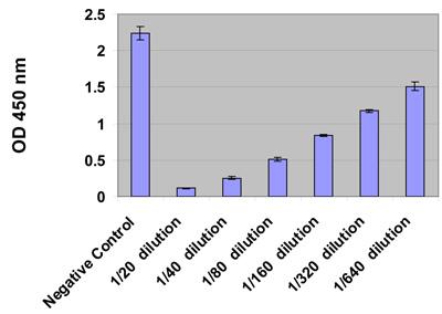 ヒト尿サンプル中の 8-OHG と8-OHdG レベル