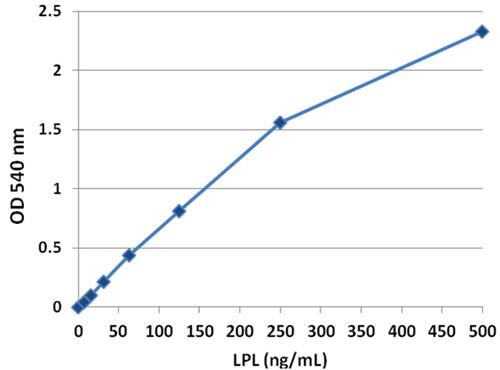 リポタンパク質リパーゼ (LPL) ELISA キット