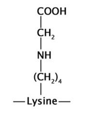 Nε-カルボキシメチルリジン(CML)の構造