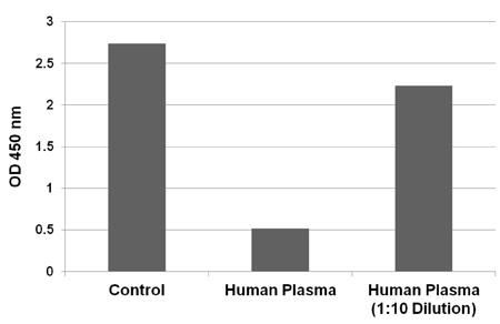 ヒト血漿中のCML タンパク質付加体