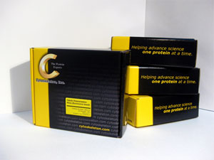 Signal-Seeker™ ユビキチン化タンパク質濃縮キット