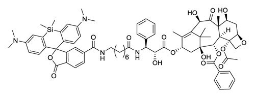 SiR-tubulin(チューブリン染色プローブ:CY-SC002)