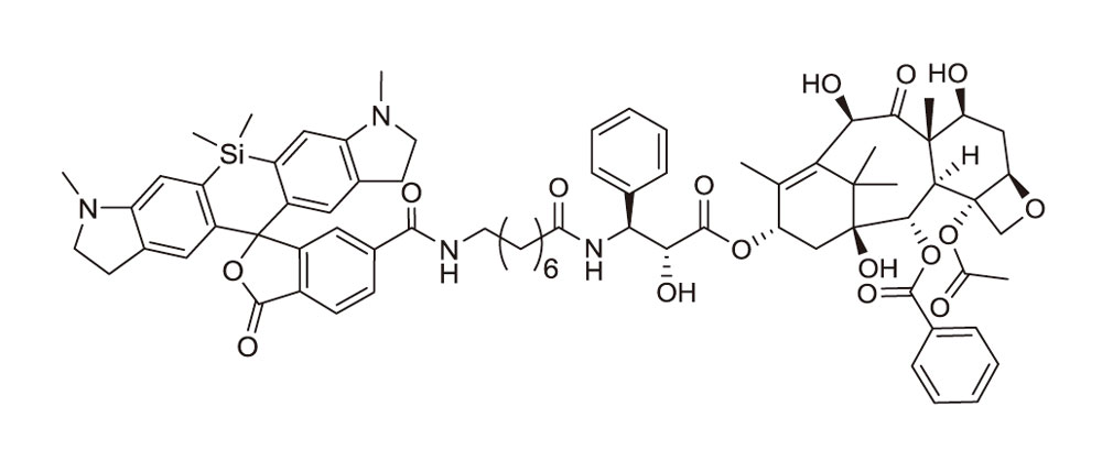 SiR700-tubulin(チューブリン染色プローブ:CY-SC014)