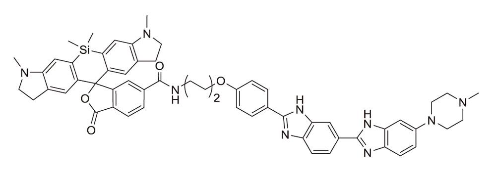 SiR700-tubulin(チューブリン染色プローブ:CY-SC015)