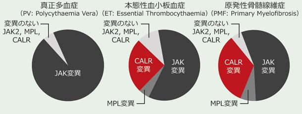 MPNにおけるJAK2/MPL変異に関連したCALR変異の診断的意義