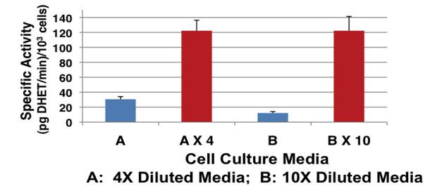 HepG2 細胞培養培地試験