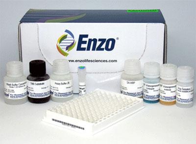 Arg8-バソプレシン ELISA キット