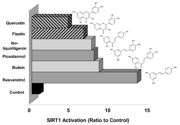 SIRT1のポリフェノール活性化剤