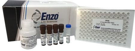 Proteasome 20S assay kit