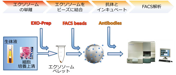 Exo-FACS Ready to use キット