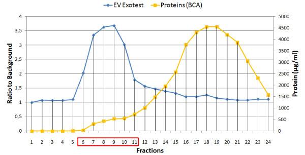 各分画でのエクソソーム量とトータルタンパク質量のつり合い