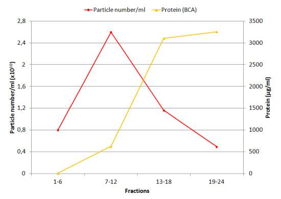 細胞外小胞とタンパク質の溶出量を比較(NTA解析 vs BCAテスト)
