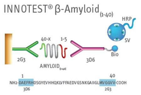 INNOTEST® β-アミロイド(1-40)キット