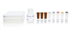Human IFN-γ/Granzyme B FluoroSpot kit