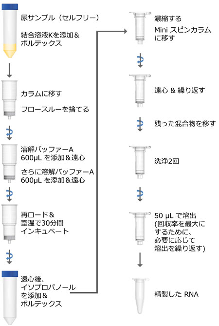 Urine Cell-Free Circulating RNA Purification Maxi Kit プロトコール