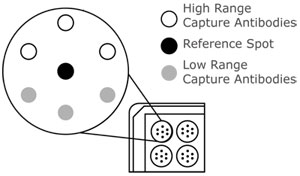 Q-Plex(TM) ELISA シングルプレックス(Singleplex ELISA)