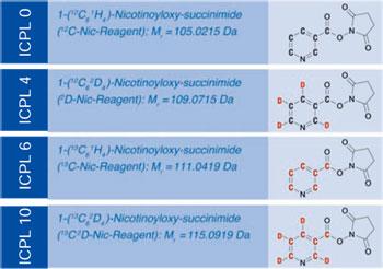 タンパク質定量解析用 ICPL Quadruplex PLUSキット-4種類のラベル