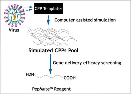 Peptide simulation technology, PST