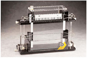 IBI SCIENTIFIC社 垂直型電気泳動槽 16 (or 42, 62cm) x18cm、最大27サンプル